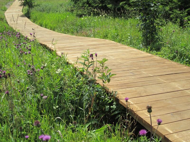 Foto 04 - Dřevěný chodník pomáhá pozitivní regulaci návštěvníků