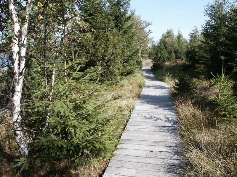 Dřevěný chodník z fošen